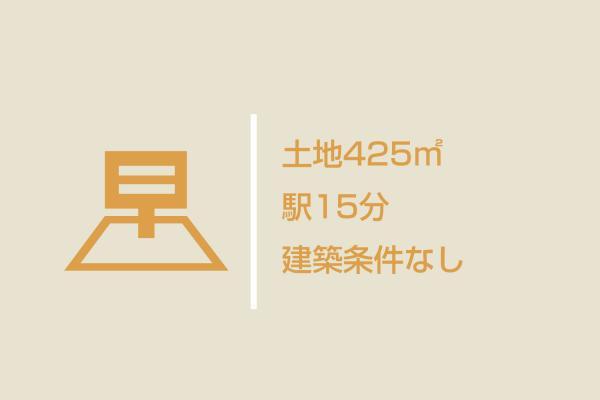 土地 埼玉県飯能市大字長沢 西武秩父線吾野駅 1080万円