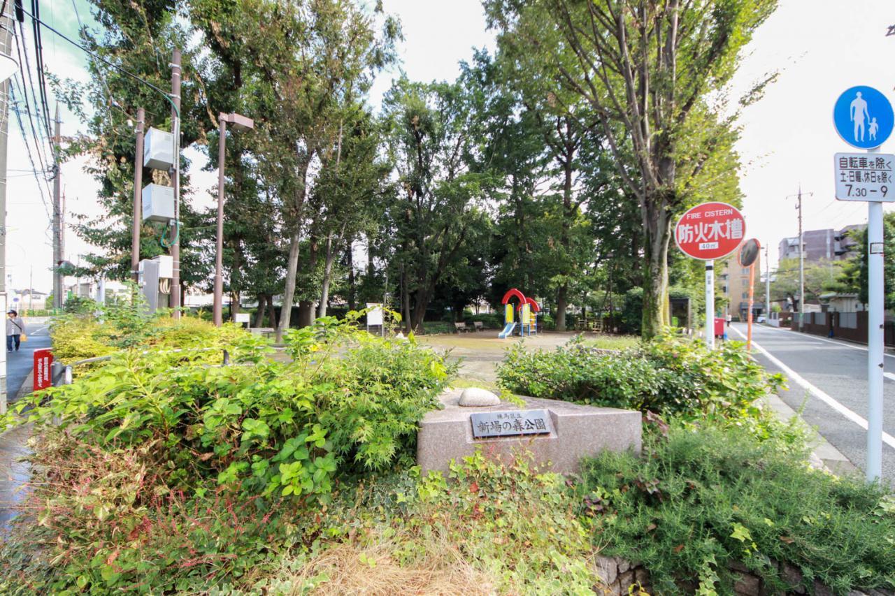 練馬区立新場の森公園