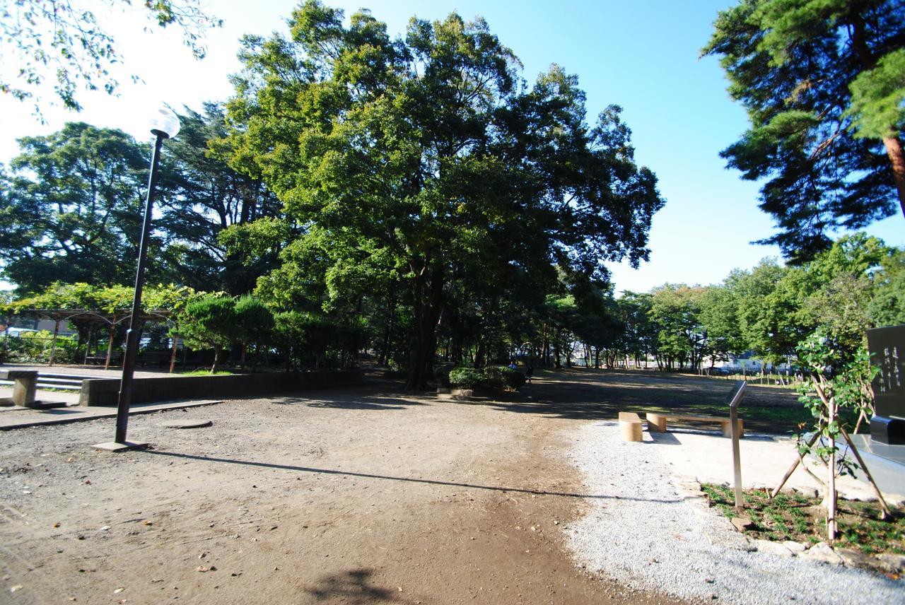 清瀬 中央公園