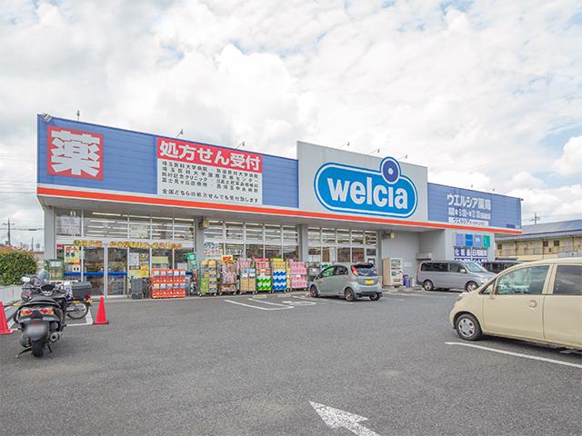 ウエルシア日高高麗川店 (調剤薬局)