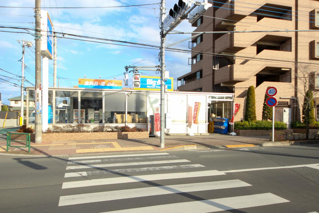 ビッグ・エー 田無向台店