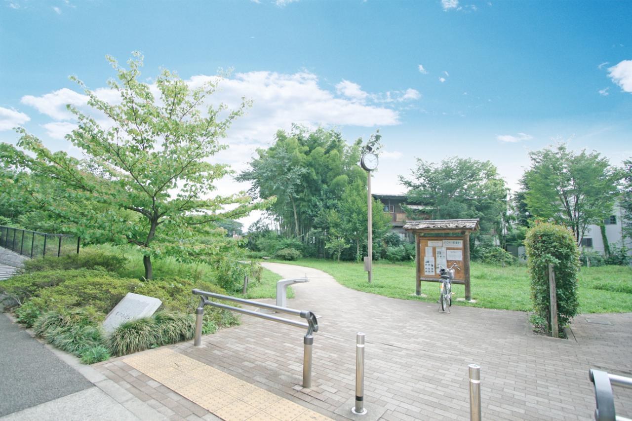 南沢水辺公園