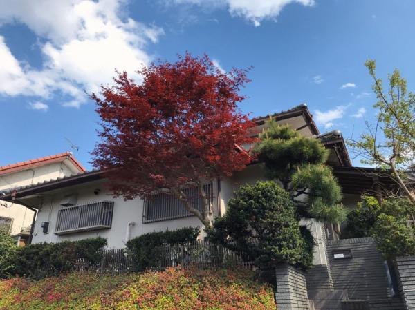 中古戸建 水戸市千波町 JR常磐線(取手〜いわき)水戸駅 1600万円