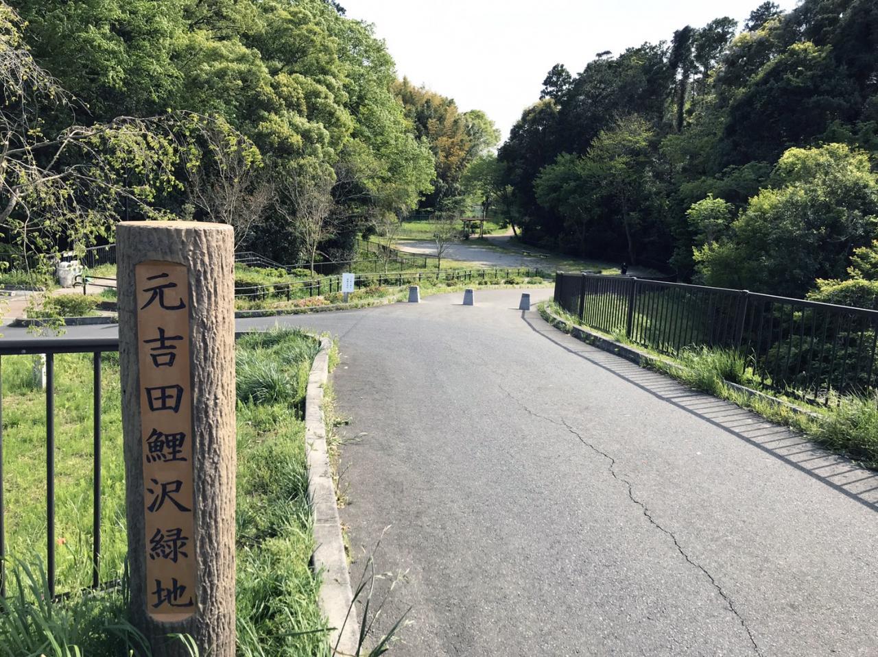 元吉田鯉沢緑地