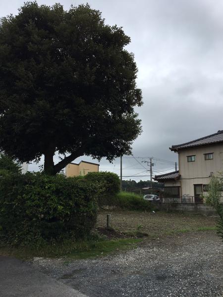 土地 館山市沼629-1 JR内房線館山駅 970万円