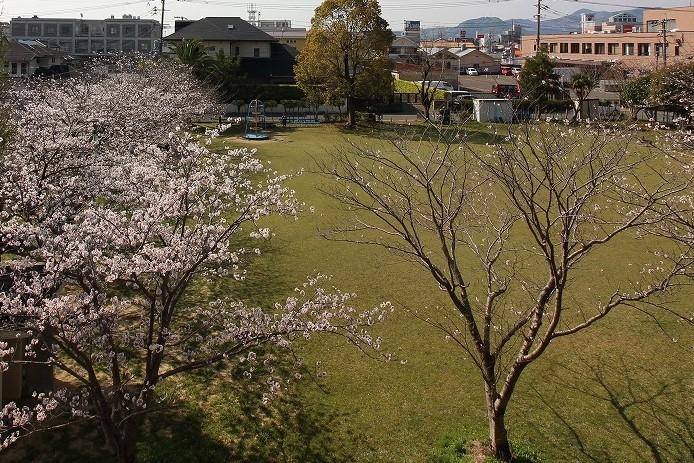 鶴町児童公園