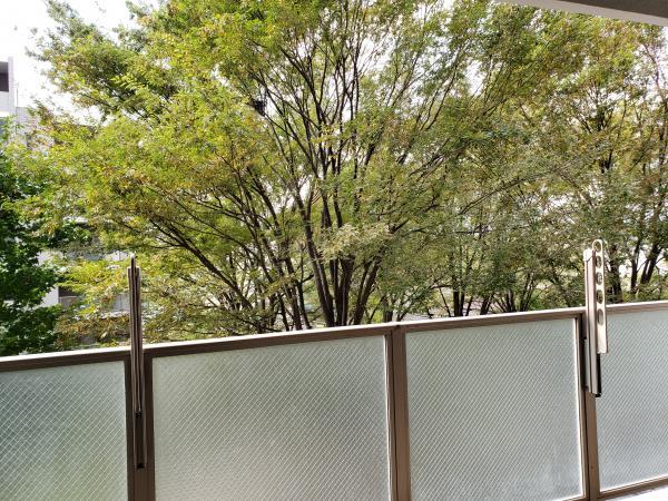中古マンション 東京都西東京市芝久保町1丁目12−66 西武新宿線田無駅 3450万円